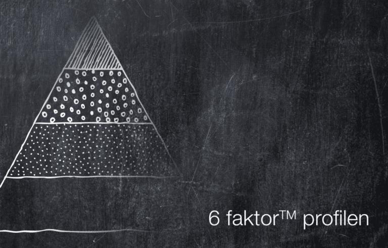 6 faktor™ profilen